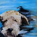 Swim by Mary Sparrow