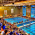 Swim Meet by Stephen Younts