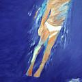 Swimmer Ascending by Lisa Baack