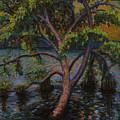 Swimming Tree by Art Nomad Sandra  Hansen