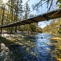 Swinging Bridge Back Fork Of Elk by Thomas R Fletcher