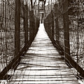 Swinging Bridge by Kathy Jennings