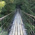 Swinging Bridge by Serina Wells