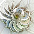 Swirling Petals by Amanda Moore
