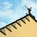 Swiss Deer On Zurich Rooftop by Ginger Wakem