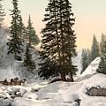 Switzerland: Davos, C1895 by Granger