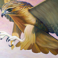 Swoop by Brian  Commerford