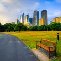 Sydney by Dennis Herzog