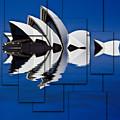 Sydney Opera House Collage by Sheila Smart Fine Art Photography