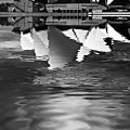 Sydney Opera House Reflection In Monochrome by Sheila Smart Fine Art Photography
