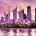 Sydney Tower Skyline At Sunset by Chris Smith
