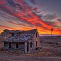 Sylvan Grove Sunrise by Darren White