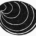 Symbol: Silence by Granger