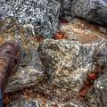 Symbolic Steps Of Life by Buck Buchanan