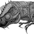 T-rex by Murphy Elliott