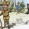 T. Roosevelt: Teddy Bear by Granger