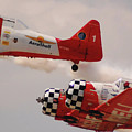 T6 Aerobatics II by DigiArt Diaries by Vicky B Fuller