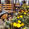 Tables And Chairs With Flowers by Ashish Agarwal