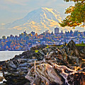 Tacoma In The Fall by Jack Moskovita