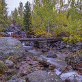 Taggert Creek Waterfall by Scott McGuire