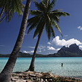 Tahiti View by David Cornwell/First Light Pictures, Inc - Printscapes
