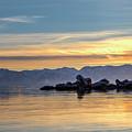 Tahoe Sunset by Soroush Mostafanejad