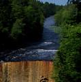 Tahquamenon Lower Falls Upper Peninsula Michigan Vertical 07 by Thomas Woolworth