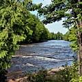 Tahquamenon River by Patti Smith