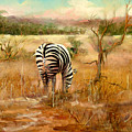 Tail Of Three Zebras by Sally Seago