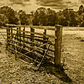 Take A Fence by Nick Bywater