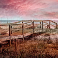 Take A Long Walk Into Dawn by Debra and Dave Vanderlaan
