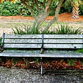 Take A Seat Lovey by Laura Ogrodnik