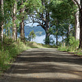 Take Me Home Country Roads by Az Jackson