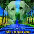 Take The High Road by Kathy Tarochione