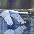 Taking Flight by Sue La Marr  Kramer