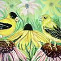 Talking Finches by Ann Ingham