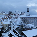 Tallin Old Town Skyline by Margaret Brooks