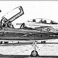 Talon Vs. Hornet by Ricky Barnard