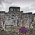 Talum Ruins 6 by Douglas Barnett