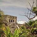 Talum Ruins 9 by Douglas Barnett
