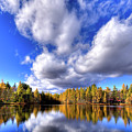 Tamarack Reflections In The Adirondacks by David Patterson