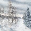 Tamarack Swamp In Winter 2  by J O Huppler