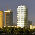 Tampa And Bayshore by David Lee Thompson