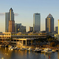 Tampa Bay And Gasparilla by David Lee Thompson