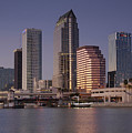 Tampa Florida  by David Lee Thompson