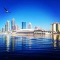 Tampa by Kiesha Katsares