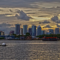 Tampa Skyline by Chauncy Holmes