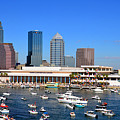 Tampa's Day Panoramic by David Lee Thompson