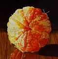 Tangerine by Catherine G McElroy