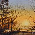 Tangerine Sky by Brenda Ferro